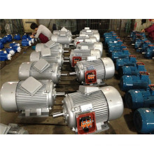 Electric Motor (Y2-132m-4) for Sale