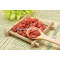 Jiangnanhao goji / wolfberries organiques / baies de goji séchées