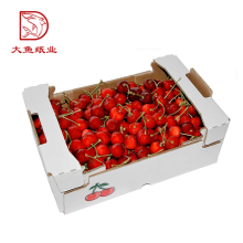 Factory direct custom size luxury cherry tomatoes packaging carton box