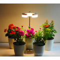 Professional LED Grown Light with factory price