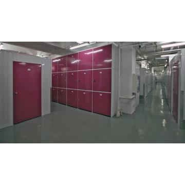 Technique de mini-entrepôt industriel de revêtement CRS non standard
