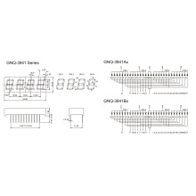 0.39 Inch 4 Digit 7 Segment Display (GNS-3941Ax-Bx)