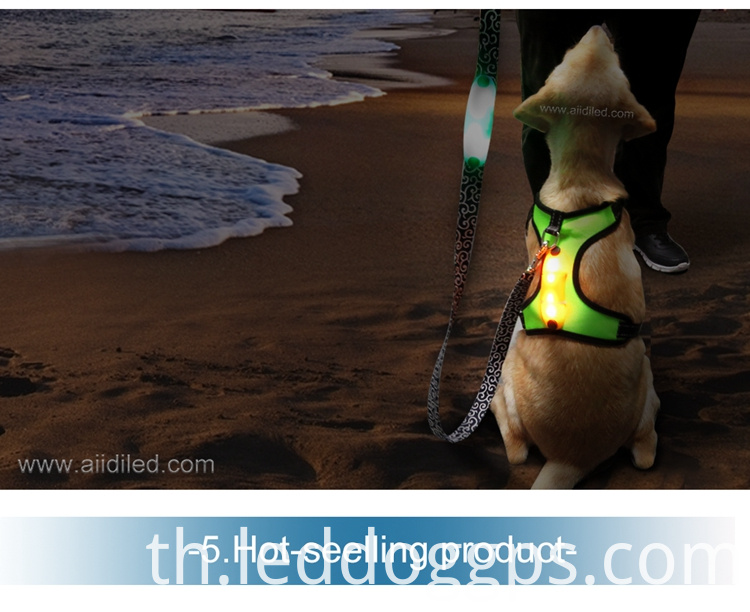 Glow Up Dog Harness