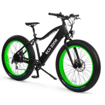 fetten Reifen elektrisches Fahrrad