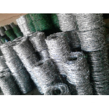 Barbed Galvanized Wire for Protection