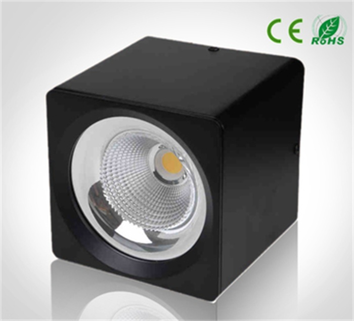 LED ceiling downlight 10W