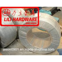 3.35mm Gavanized el alambre de la base de acero / el conductor del conejo de ACSR