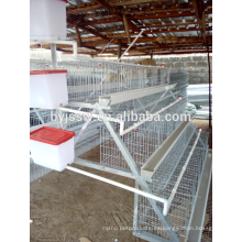 Proveedor de granja de pollos de aves de corral de alta calidad Jaula de aves de corral barata