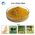Ein Grad und ein Huhn benutzen Mais-Gluten-Mahlzeit mit dem Massenverpacken