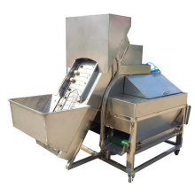 Auto Onion peeling machine