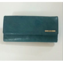 Guangzhou Wholesale Foldable Bag Lady Waller and Purse (172)