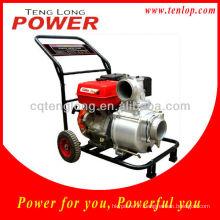 Meilleure vente de pompes à eau italienne 4' Battery Powered