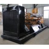 Biomass Generator (LHBMG300)