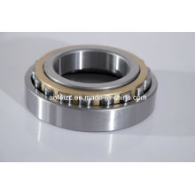 200X360X58mm truck parts cylindrical roller bearing N240EM