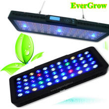 Touch Screen It2040 120W Auto Dimmable LED Aquarium Reef Lighting