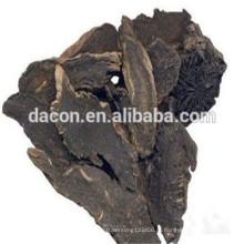корень норичниковых экстракт порошок