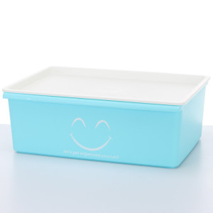 2017 New Cute Storage Organizer