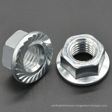 Flange Nut with Serration for Automotive (CZ339)
