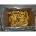 Export Standard Quality of Fresh Ginger
