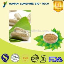 medicine slim body / Green Coffee Bean Extract Capsules chlorogenic acid