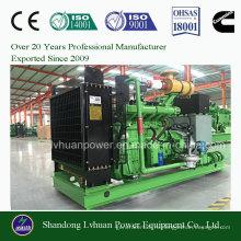 Генератор природного газа устанавливают от 10kw к 1000kw для СПГ СПГ