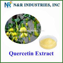 Qualität 98% Pulver Quercetin