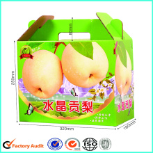 Corrugated Paper Carton Paper Box for Pear