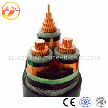 Fire Resistant/PVC/XLPE/PV Insulated Power Cable