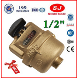 Volumetric Rotary Piston Brass Body Cold Water Meter (LXH-15A-40A)