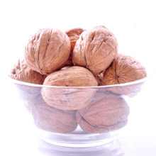Organic Raw Walnuts in Shell and Without Shell Kernels