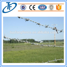 Cheap Safety Barbed Wire Fence Made in Anping (China Supplier)