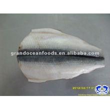 frozen IQF atlantic herring fillet