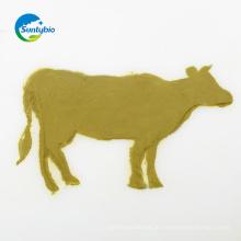 Feed Grade Melasse Hefe für Tier
