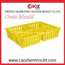 Plastic Injection Crate Mold für den Transport