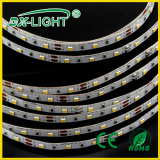 RGB Flexible LED Strip Light Being IP65 Waterproof 60 LEDs SMD3528