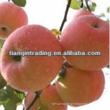 frutas frescas de maçã