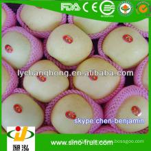 [HOT]2014 new crop fresh Apple