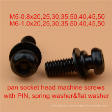 Assembly Screw Safety Screw