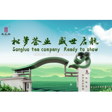 Huangshan songluo -chunmee tea supplier with EU standard for europe market
