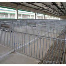 Pig Farming Equipment Pig Fatten Crate