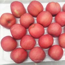 FUJI Apfel erröten rote Farbe