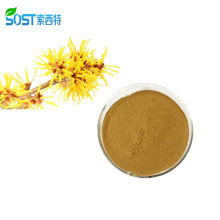 Wholesale Organic Witch Hazel Extract Powder For Skin Care