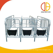 Ganadería Puerco Cage Cerdo Gestation Stall