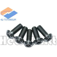 high strength Gr5 titanium round head bolt