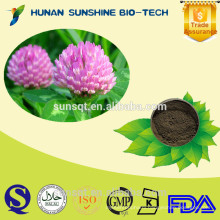 High quality Pure red clover burdock extract red clover burdock