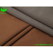 Polyester Sofa Fabric (BS2209)