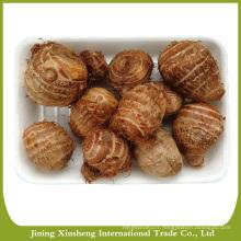 2016 bonne qualité taro de Chine