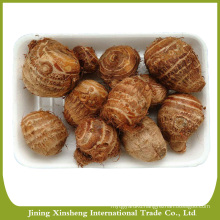 2016 good quality taro from China