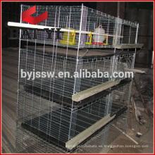 Jaula de pollo viva de alta calidad para transportar para una venta caliente