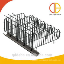 caja de gestación granja de cerdos uso caliente jaulas de cerdas galvanizadas jaula de cerdo